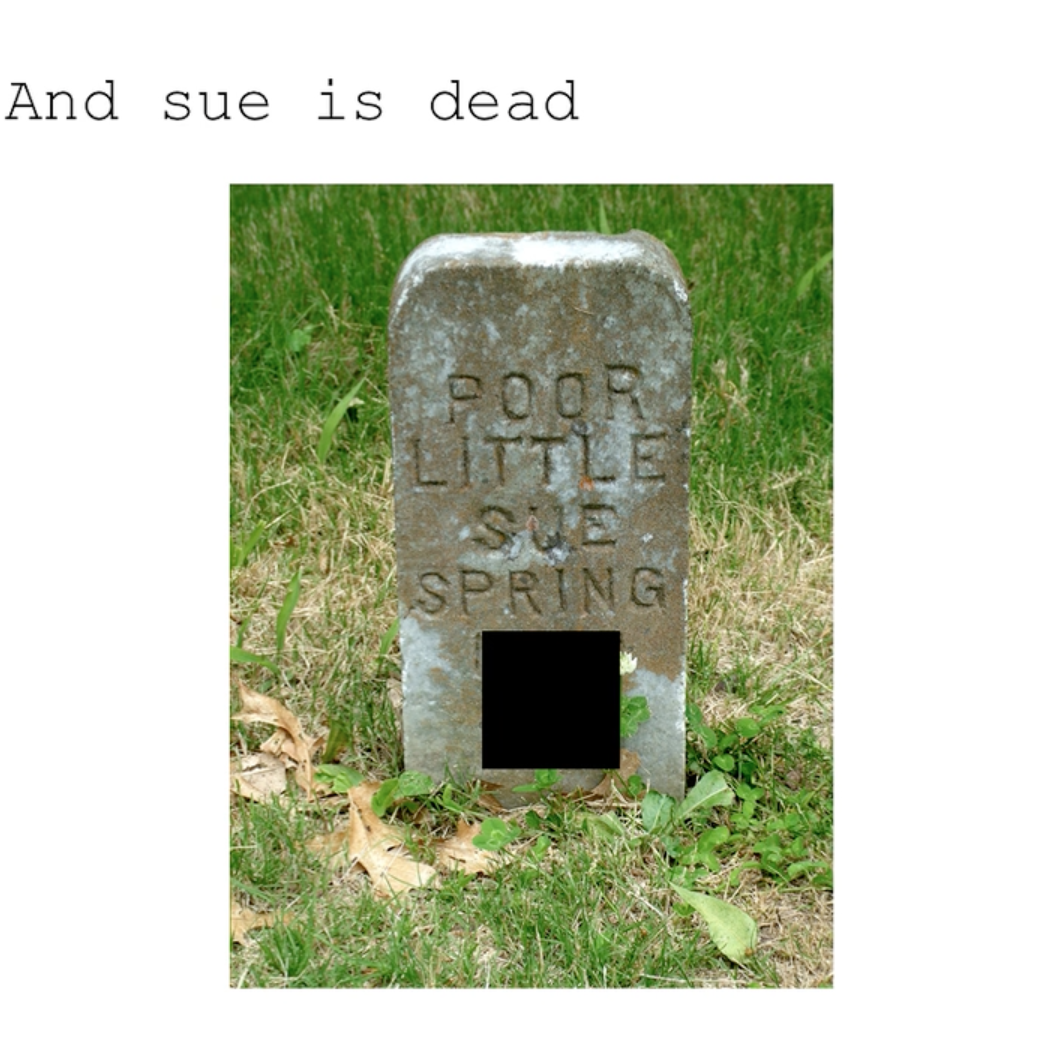 Sue Is Fine   narrated PowerPoint (2016)