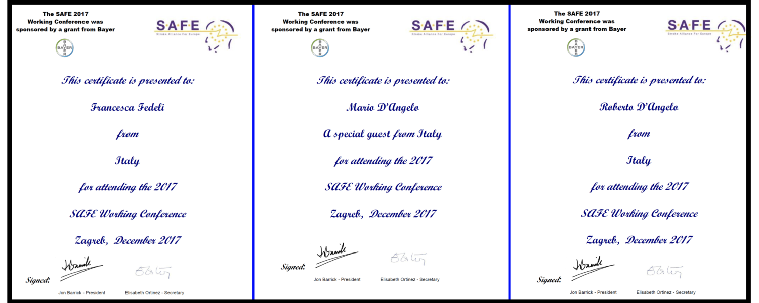 SAFE (Stroke Alliance For Europe) 2017 Working Conference