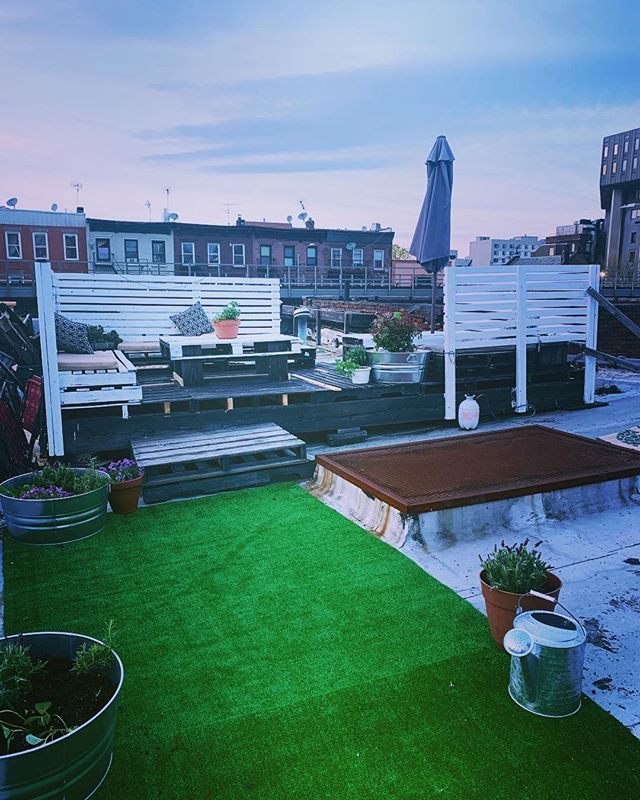 Roofdeck is open!  Lavender, roses, herbs, and plenty of sunshine.