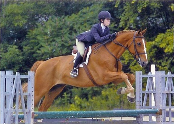 Austin - Equitation packer