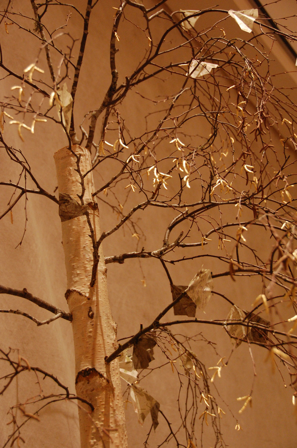 "Constance Lee Adams' gold leafed birch tree top with some of the ""leaves"" collected from the congregation."