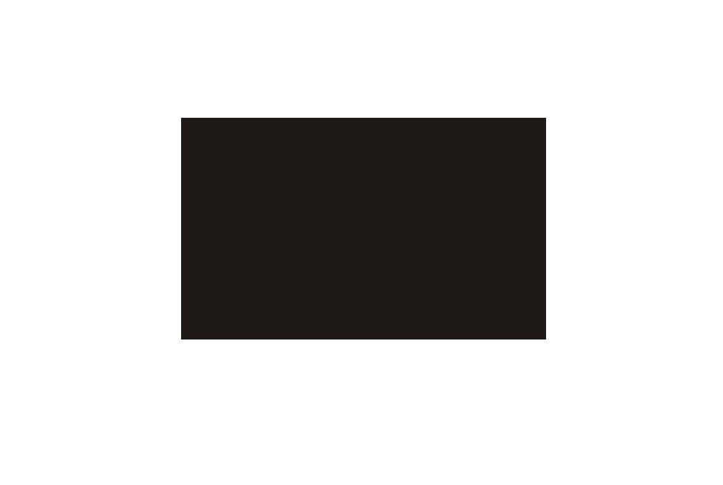 T LIONS MEDIA