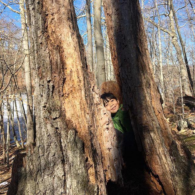 Found you! #waterandlightning #hideandseek #naturekids #childrenunplugged #childhoodunplugged #trees
