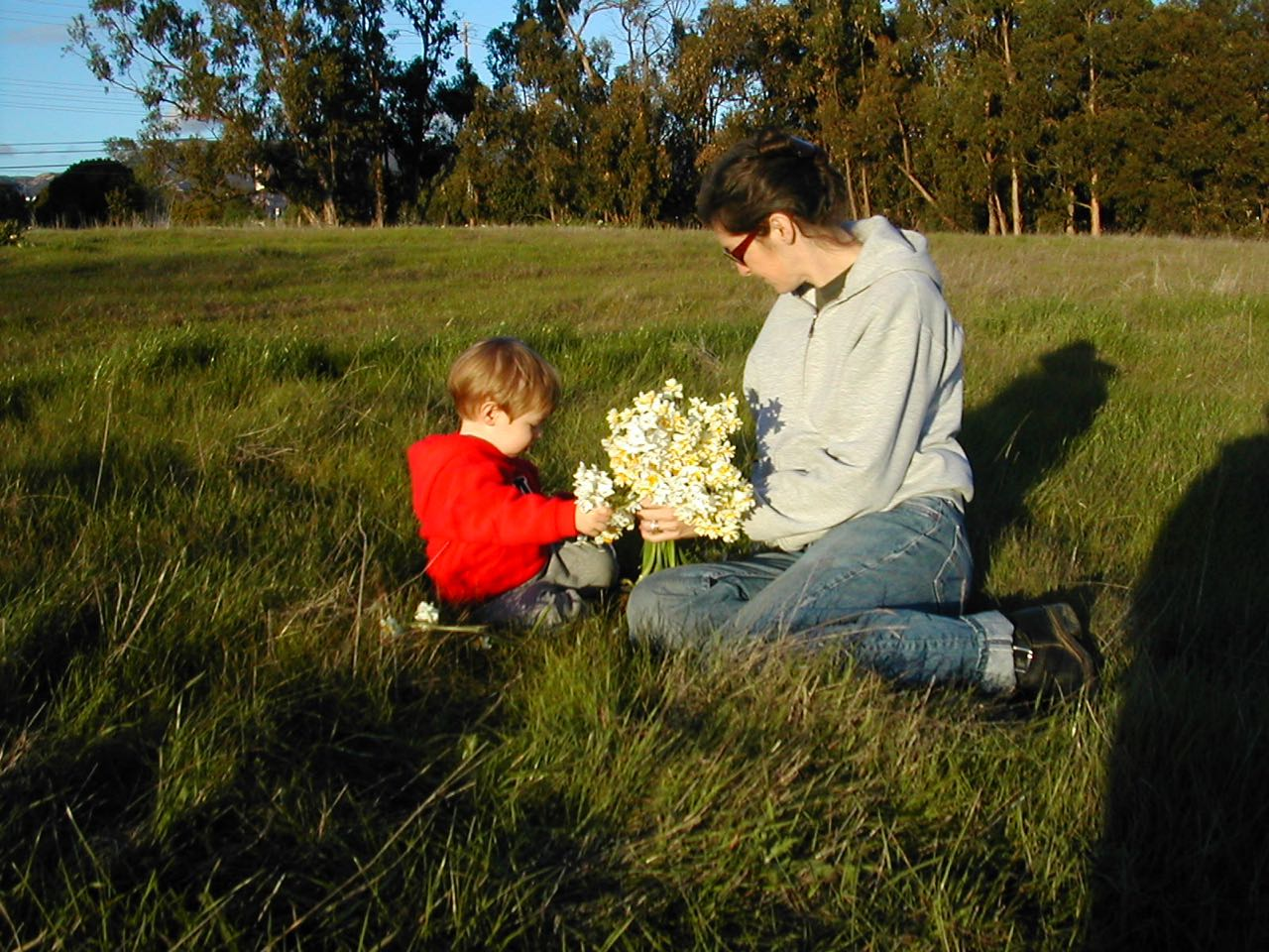 Every post needs a picture so here's one from 2003 of me and Jackson picking flowers after a rainstorm over at the Ellwood preserve, half of which is covered in condos now, but you can still walk through to see the monarch butterflies mating every January. The monarchs don't care if you watch. Who knows, maybe they're into it.