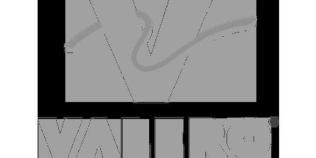 VALERO_logo.png
