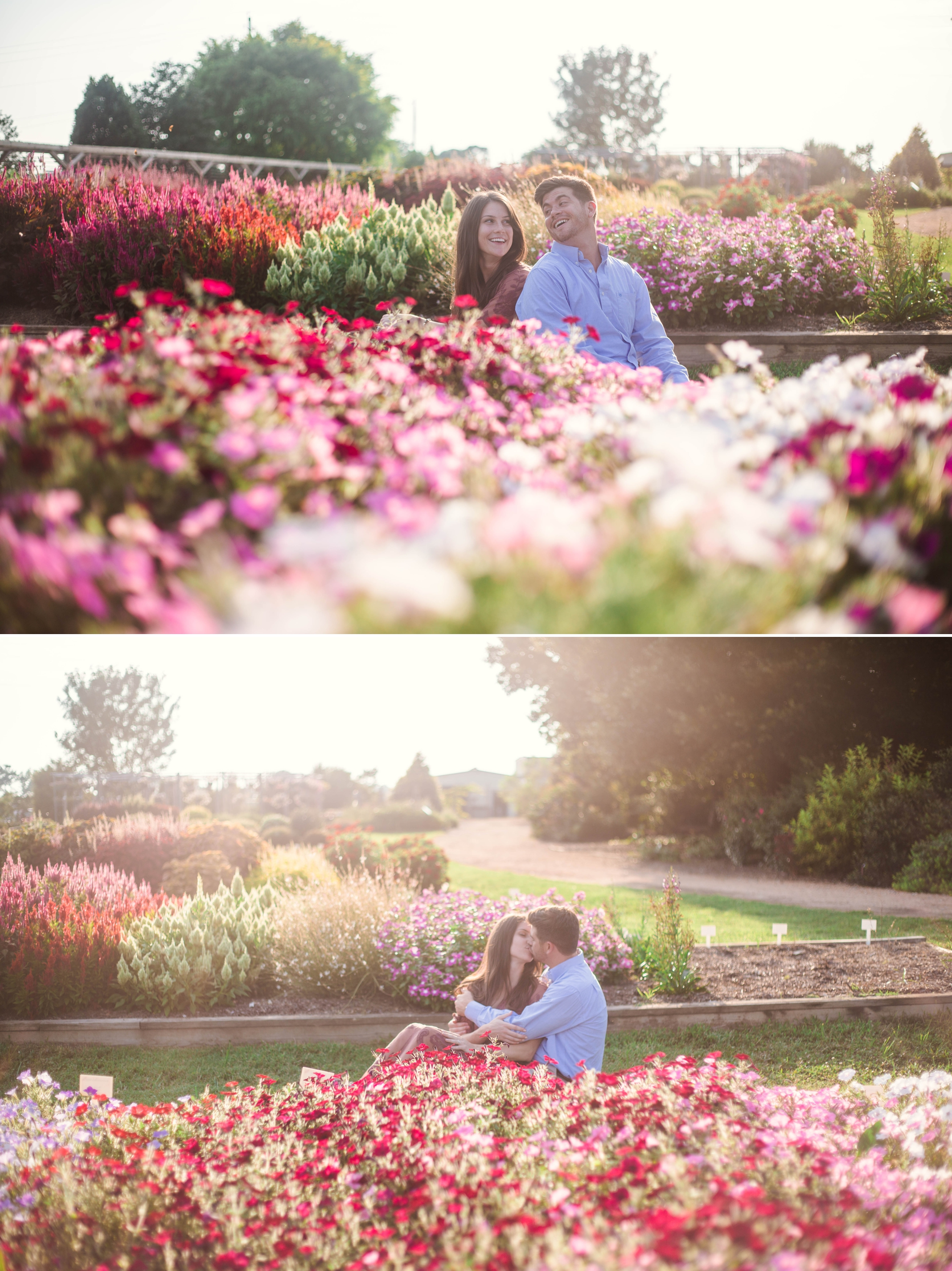 Rose Garden Engagement Aryn + Tyler -  Photography Session at the JC Raulston Arboretum - Raleigh Wedding Photographer