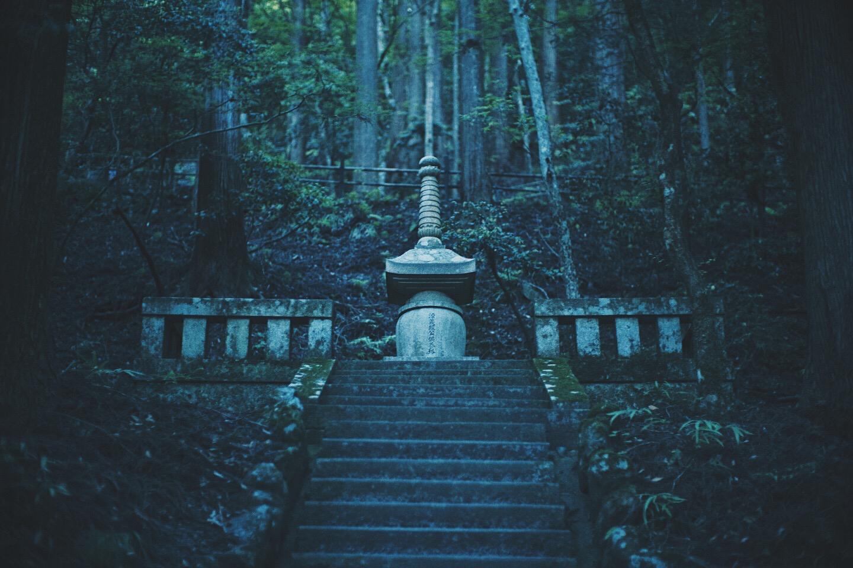 JAPAN 5-17 - 57 of 188.jpg