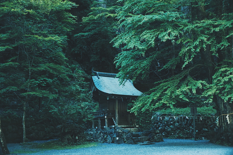 JAPAN 5-17 - 60 of 188.jpg