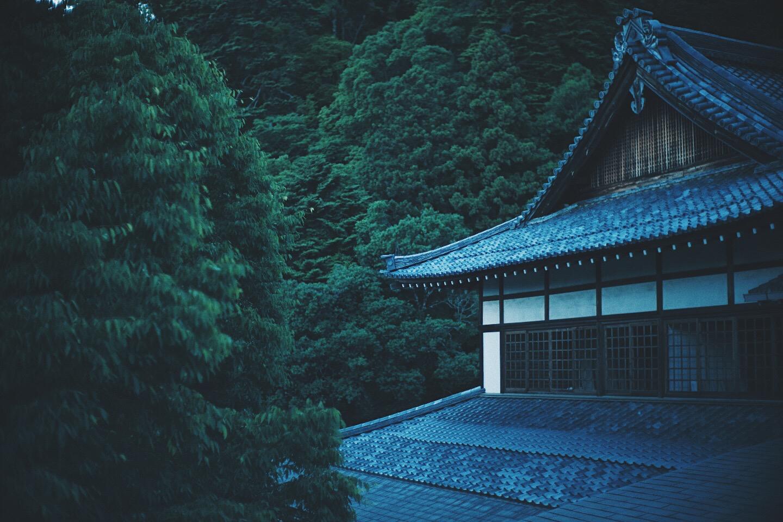 JAPAN 5-17 - 66 of 188.jpg