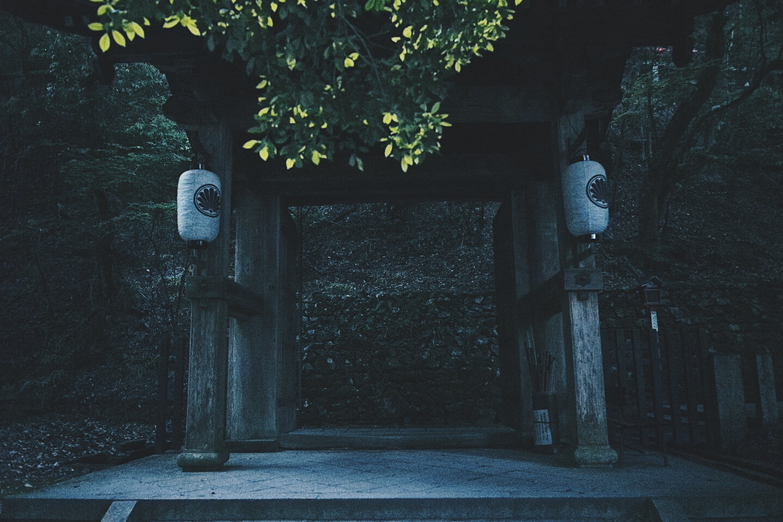 JAPAN 5-17 - 80 of 188.jpg