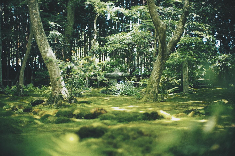 JAPAN 5-17 - 112 of 188.jpg