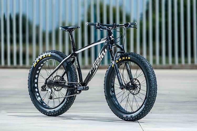 European designed Fat Bike