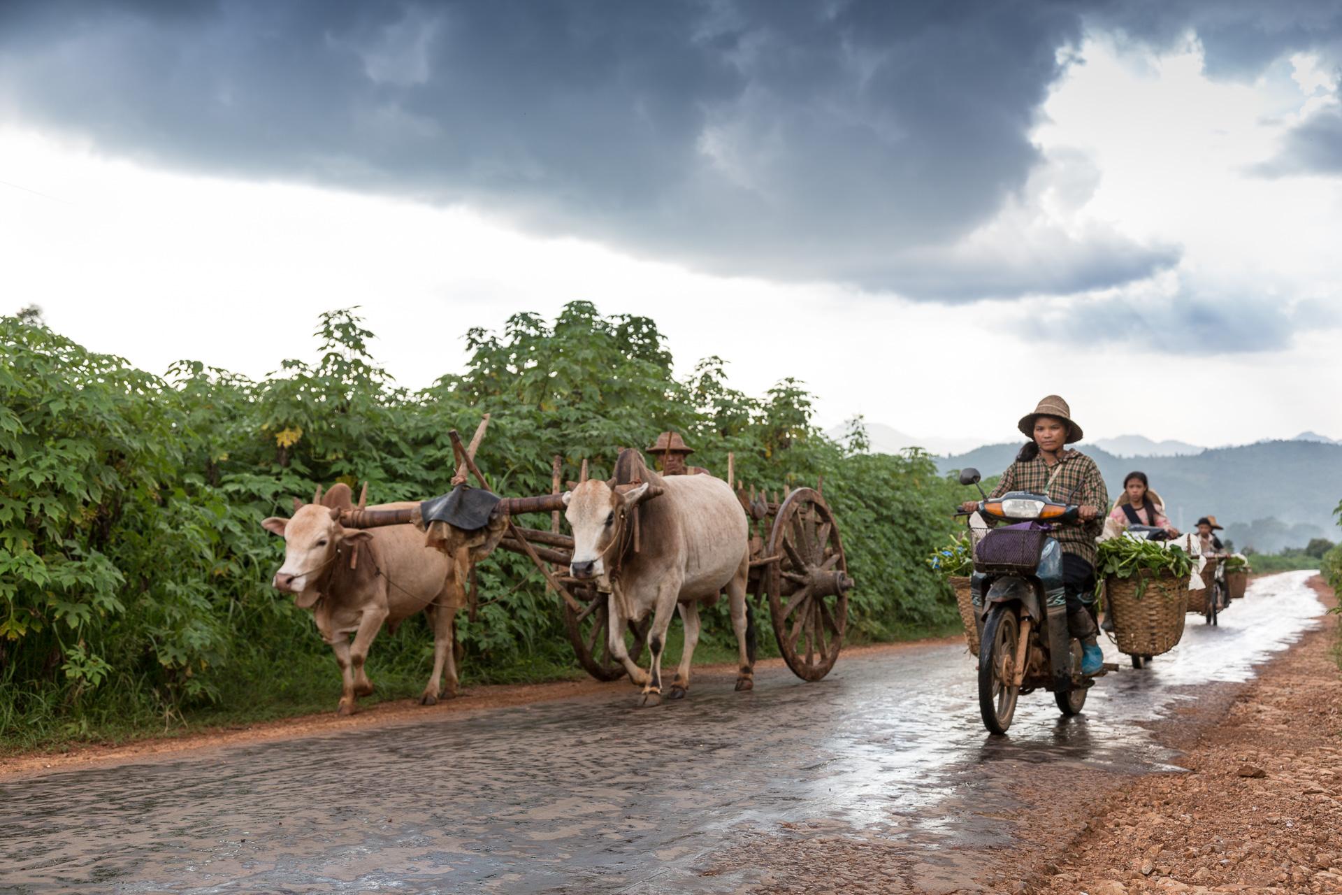 myanmar-reportage-wisckow-029.jpg
