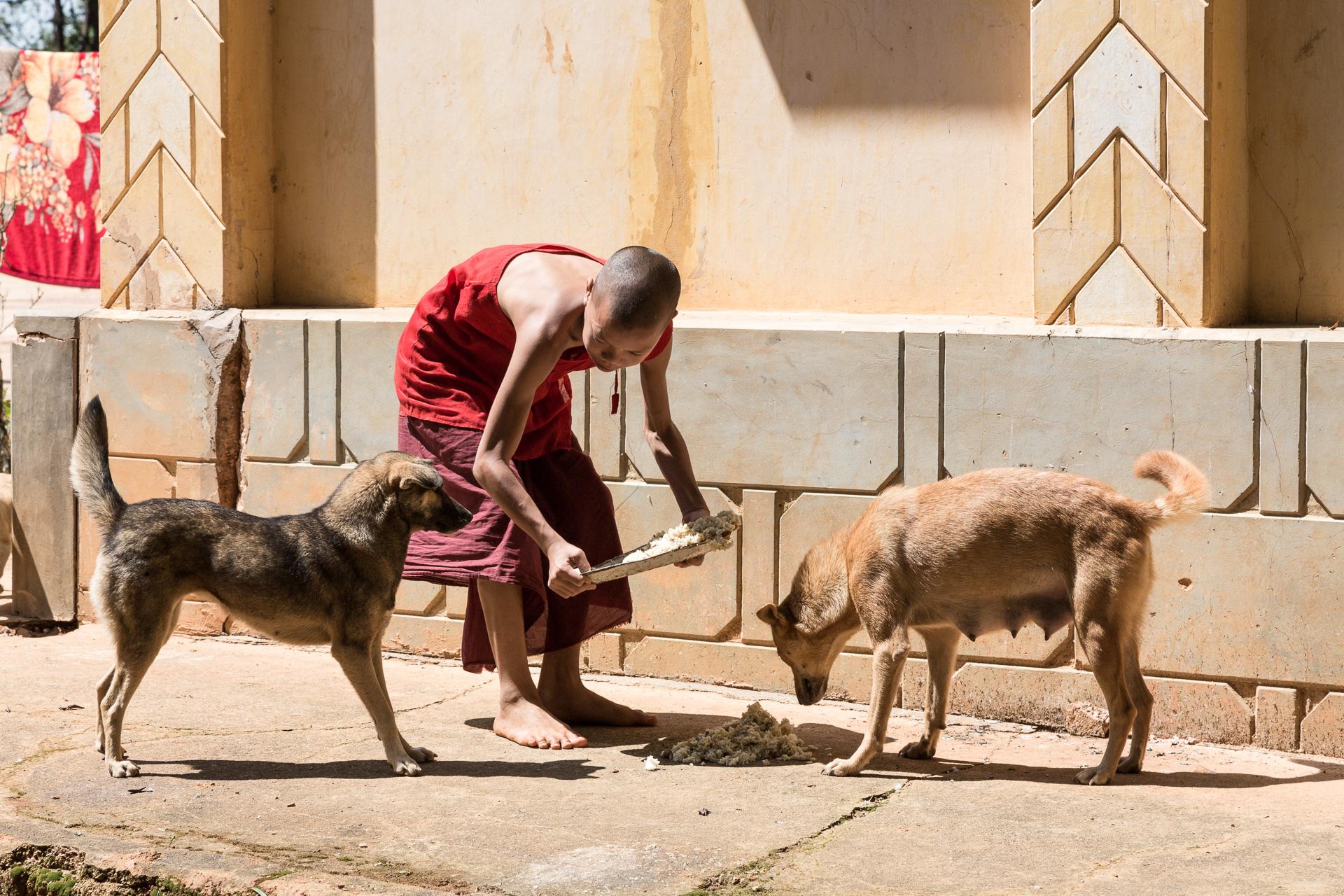 myanmar-reportage-wisckow-035.jpg