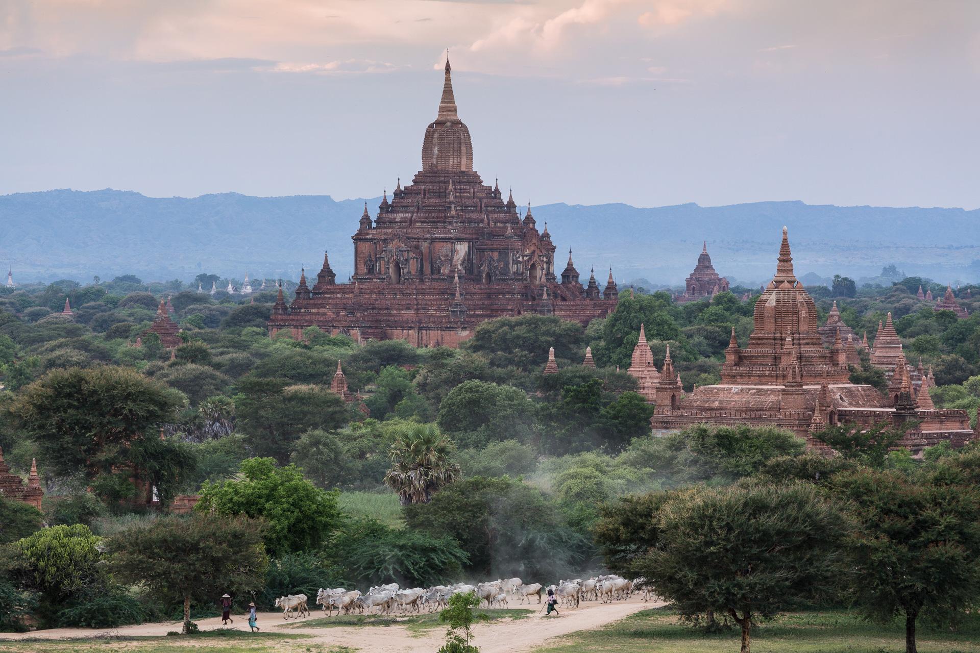 myanmar-reportage-wisckow-045.jpg