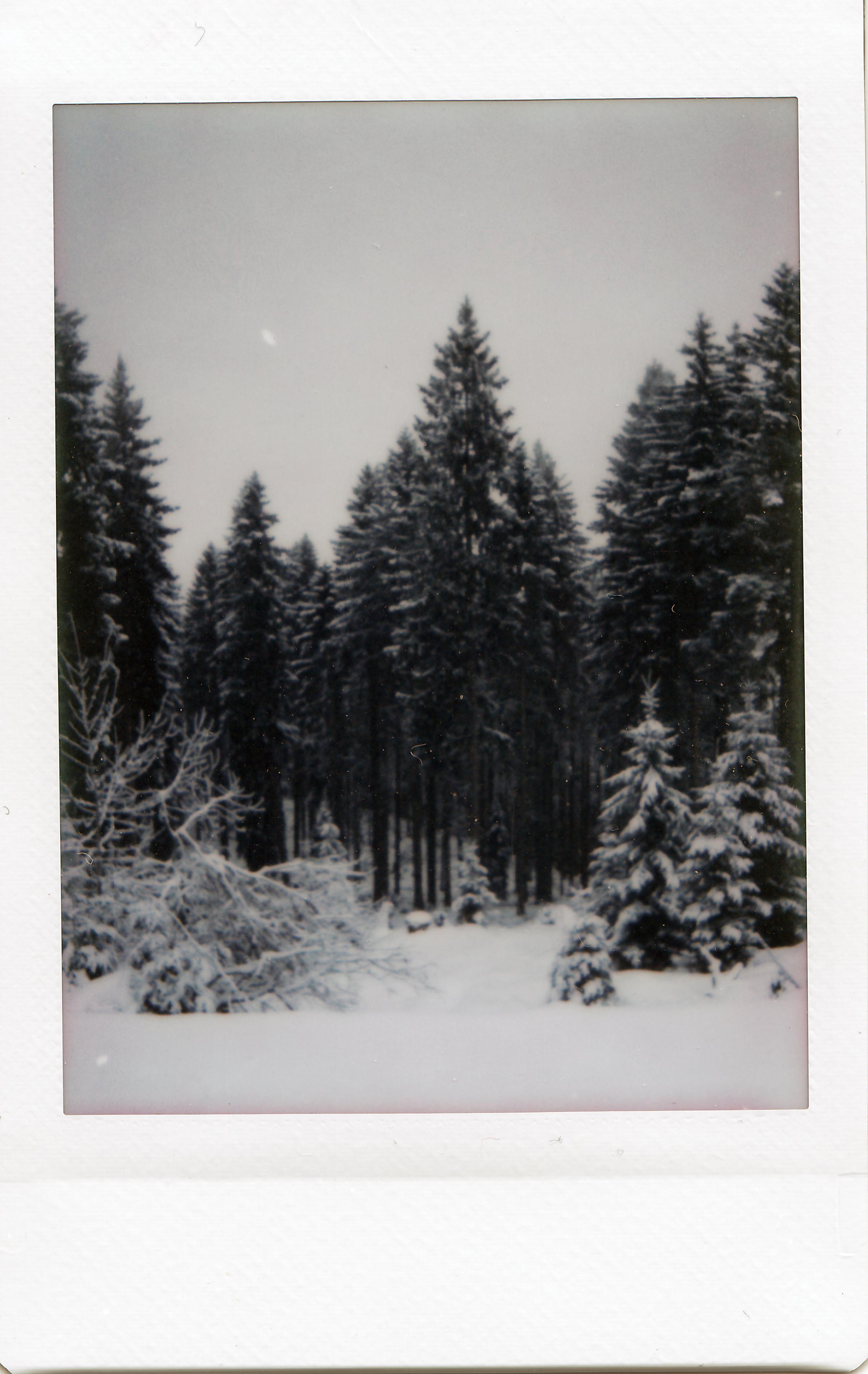 snowy-winter-in-garmisch-germany