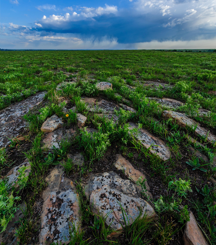 Red Buffals_Hogle__DSC6859 crop top.jpg