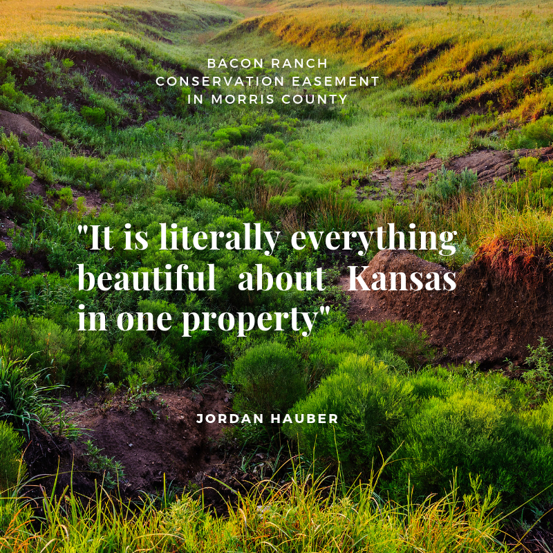 _It is literally everything beautiful about Kansas in one property_ (1).png