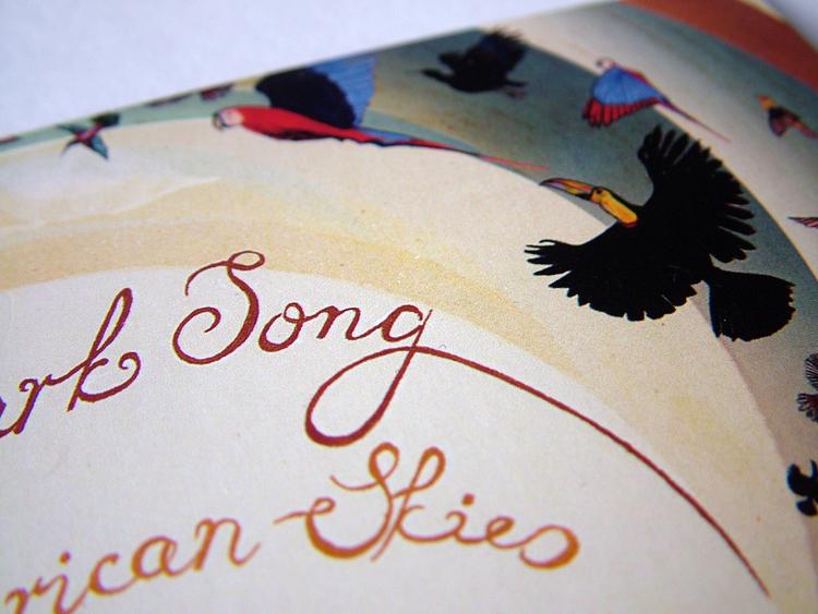 Skylark Song - South American Skies