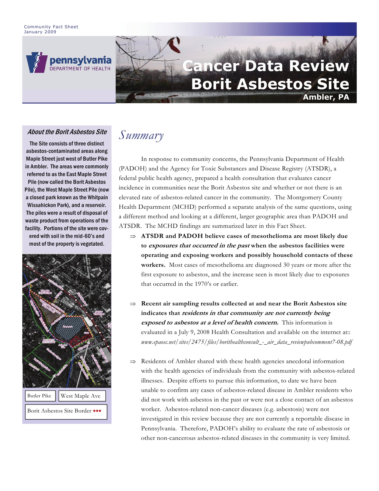 Cancer data review for BoRit asbestos site, excerpt, January 2009.   Pennsylvania Department of Health.