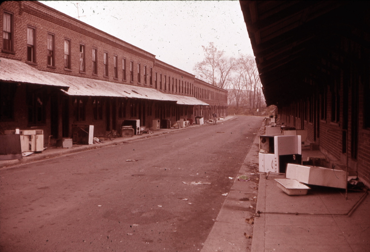 West Ambler, approximately Oak Street and West Maple Street, ca. 1960s.  Courtesy of Salvatore Boccuti.