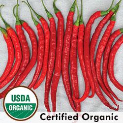 Joe's Long Organic Pepper