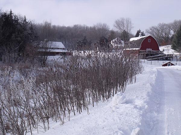 January at Heritage Farm