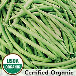 Empress Bean Organic