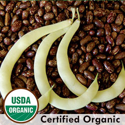 Sultan's Golden Crescent Bean Organic