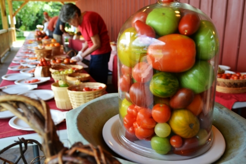 Volunteers prepare plates full of sliced tomatoes for sampling and a cloche of tomatoes graces the head table.