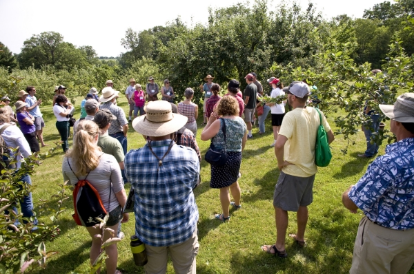 Conference attendees at Seed Savers Exchange learn the basics of apple grafting and tree care in the historic orchard, featuring nearly 900 varieties of apple.