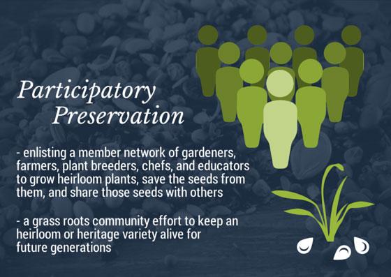 Participatory-Preservation-SSE.jpg