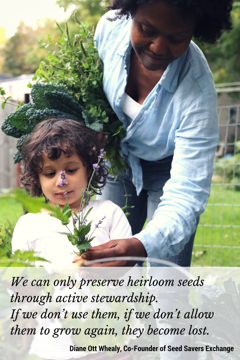 Seed Savers Exchange protects heirloom seedsso that they can be grown and enjoyed for generations to come.