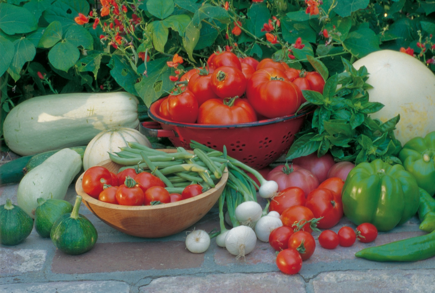 When grown using organic techniques and drip irrigation, home-grown tomatoes, peppers, squash, basil, and onions not only taste better, compared to large-scale agriculture, they use less than half the water. (Photo courtesy of Rosalind Creasy)