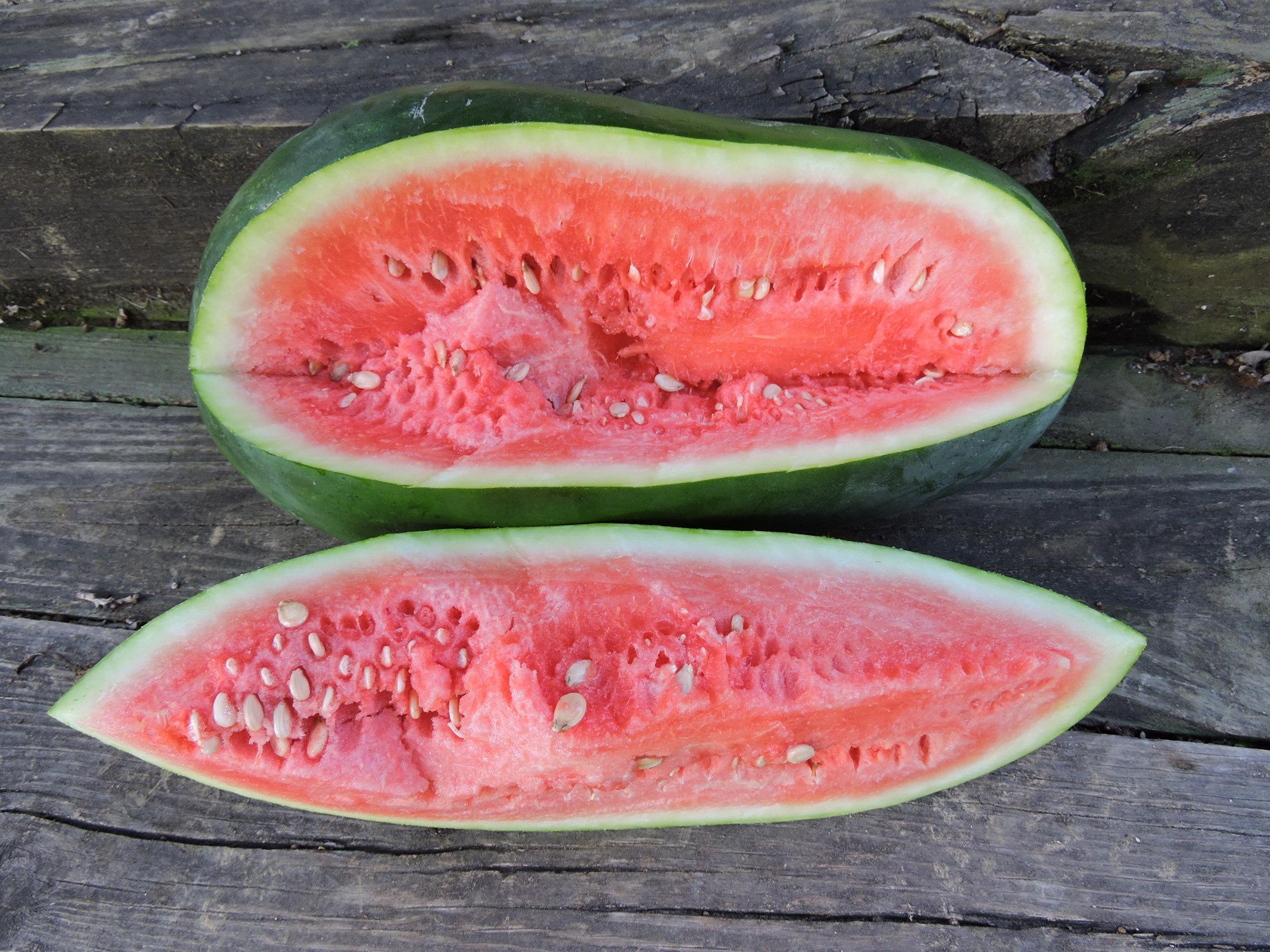 Halbert Honey Watermelon