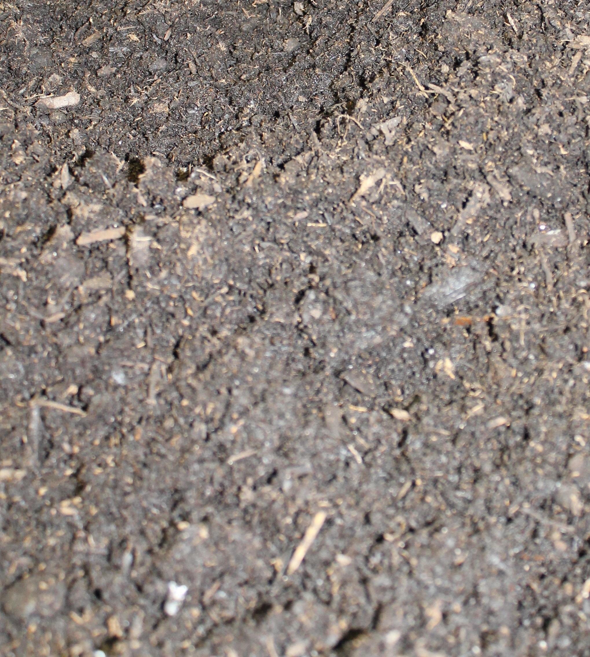 blog_soil.jpg