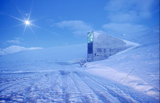 The Svalbard Global Seed Vault backs up seeds from gene banks worldwide, including ICARDA and Seed Savers Exchange.  (Photo: NordGen)