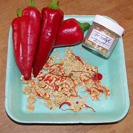 """""""红椒"""",特别是最辣的辣椒,克里斯蒂娜·格林是个非常性感的香肠。这个广告不仅是在买粉色的,而现在的广告,就像是交换,而艾米也是在买的。"""