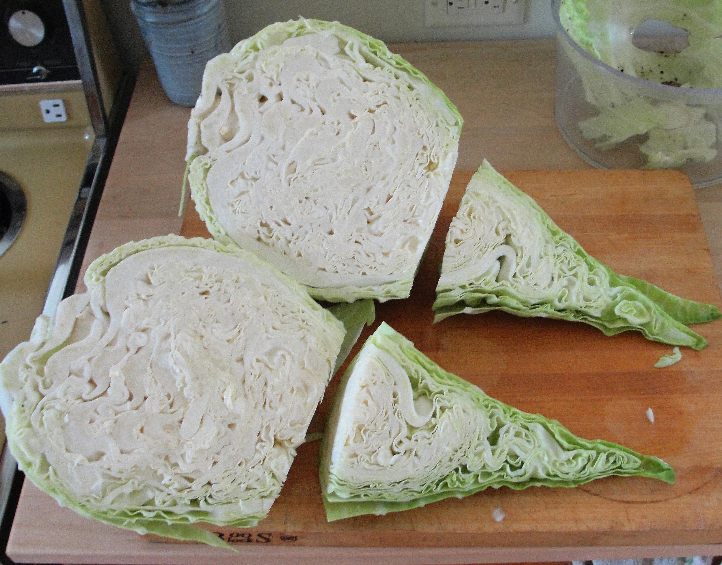 'Filderkraut' cabbage, grown by  Bjorn Bergman .