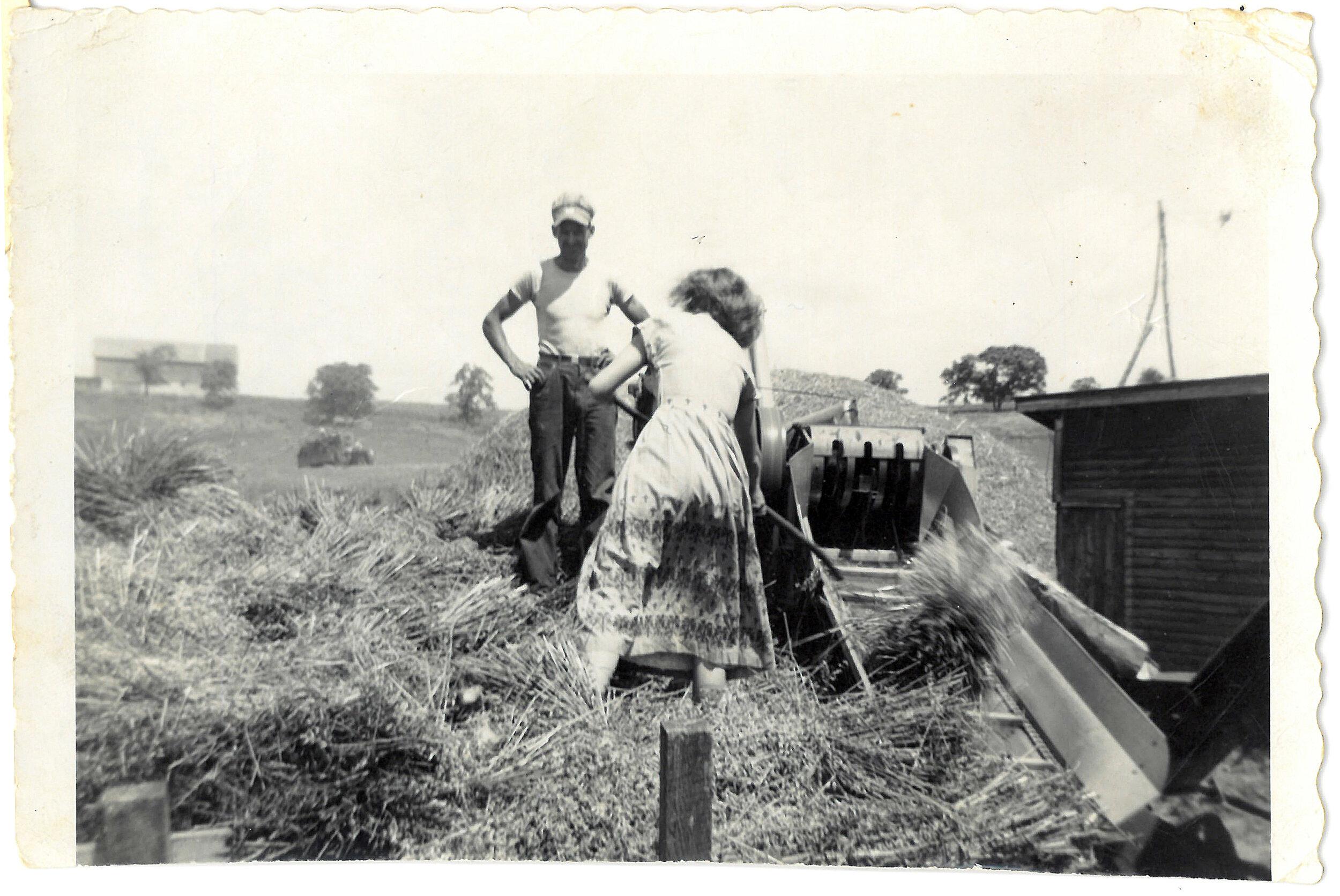 外婆外婆在牧场的牧场里能帮她卖农场。