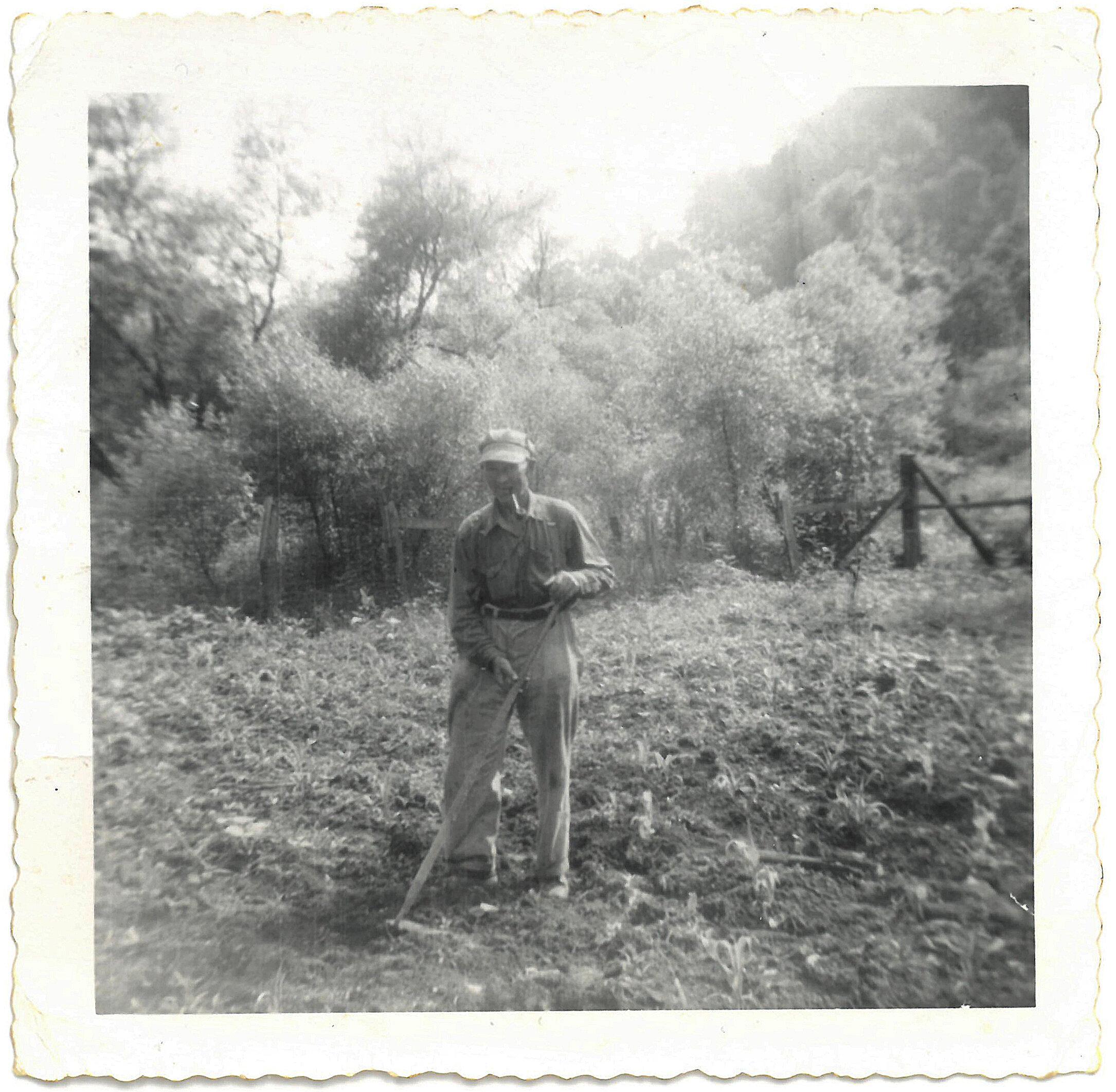 爷爷爷爷·罗丝·罗丝家族的祖母。