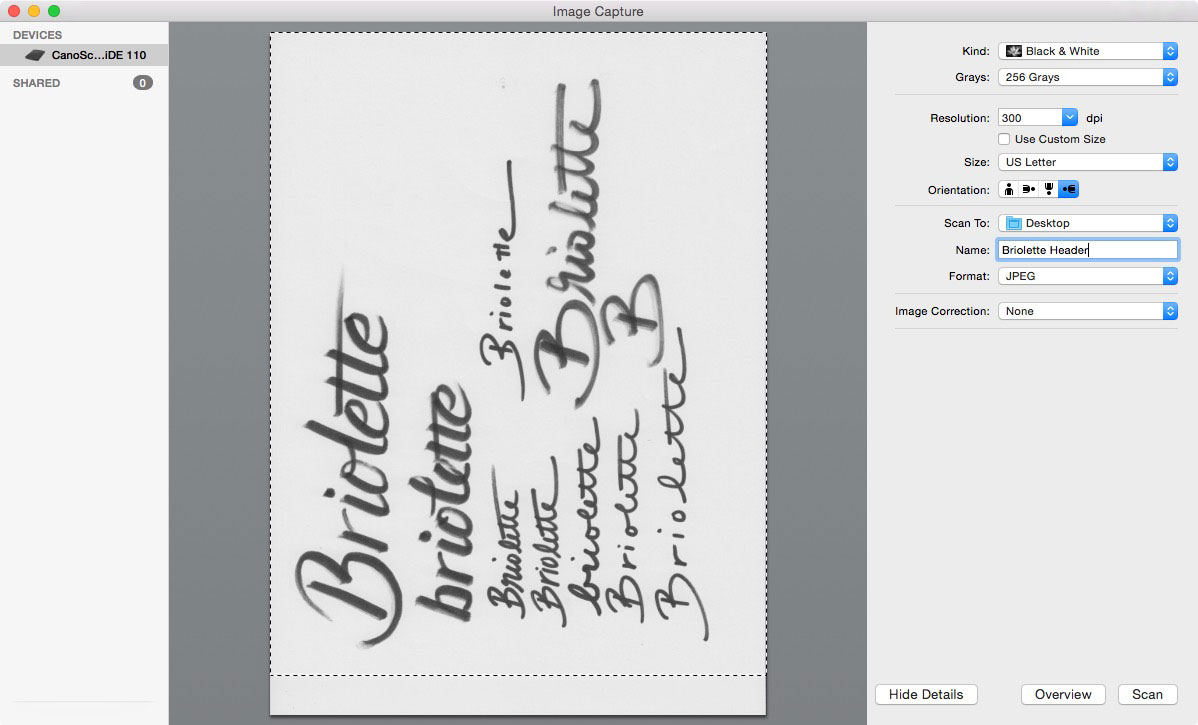 Learn how to create your own hand lettered blog header - Scan your work