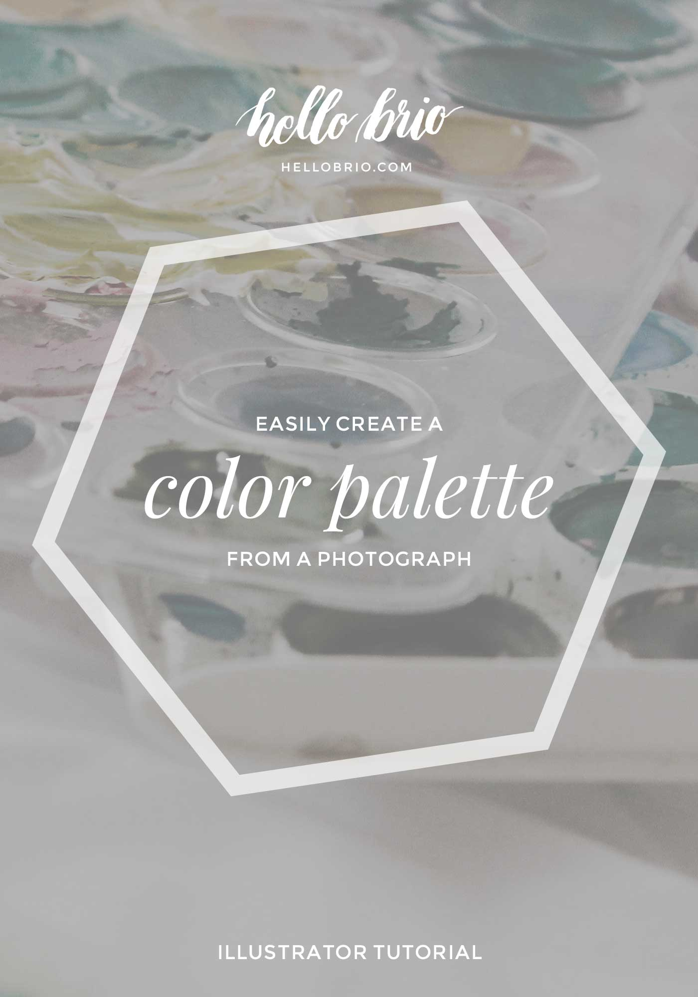 How to easily create a color palette from a Photograph in Illustrator | Hello Brio tutorials