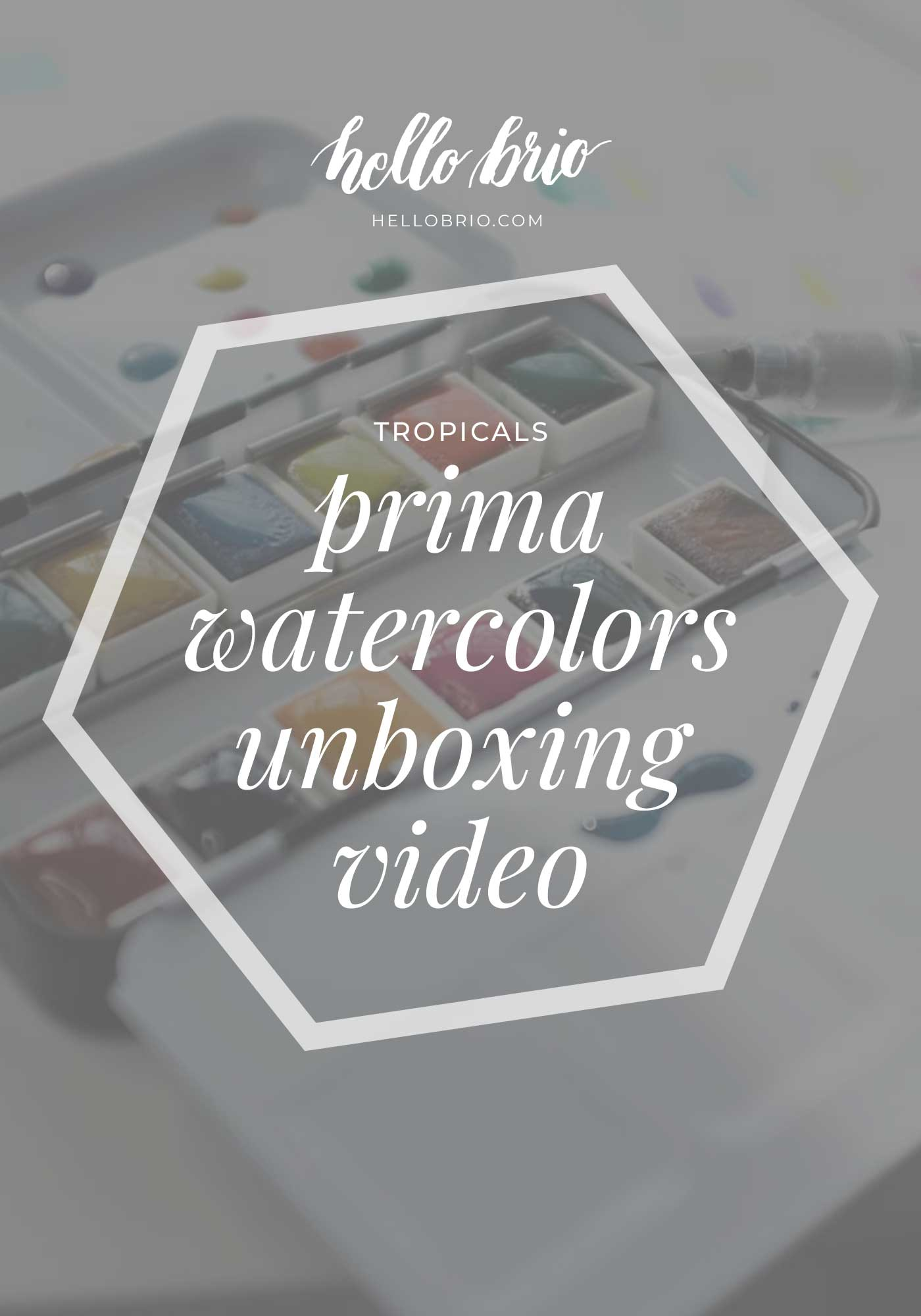 Prima Marketing Tropical Watercolor Confections unboxing video