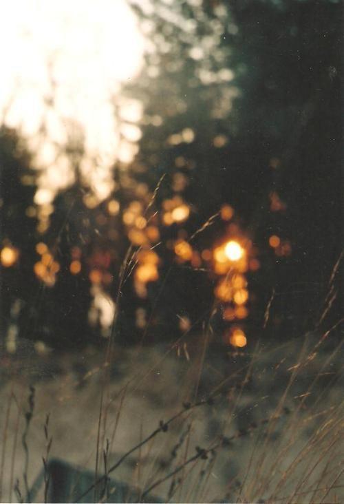 Sunset  Kara Rosenlund