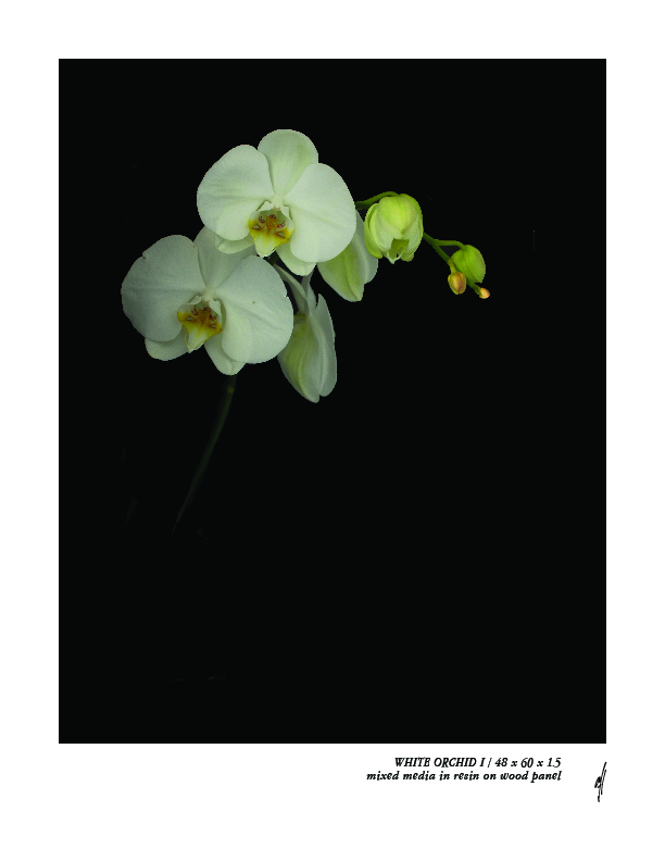 white orchid IArtboard 1-100.jpg