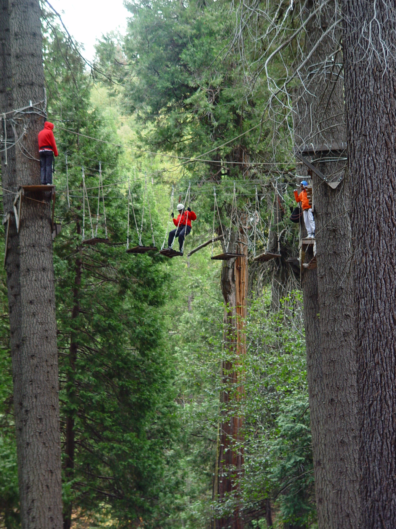 high ropes course.JPG
