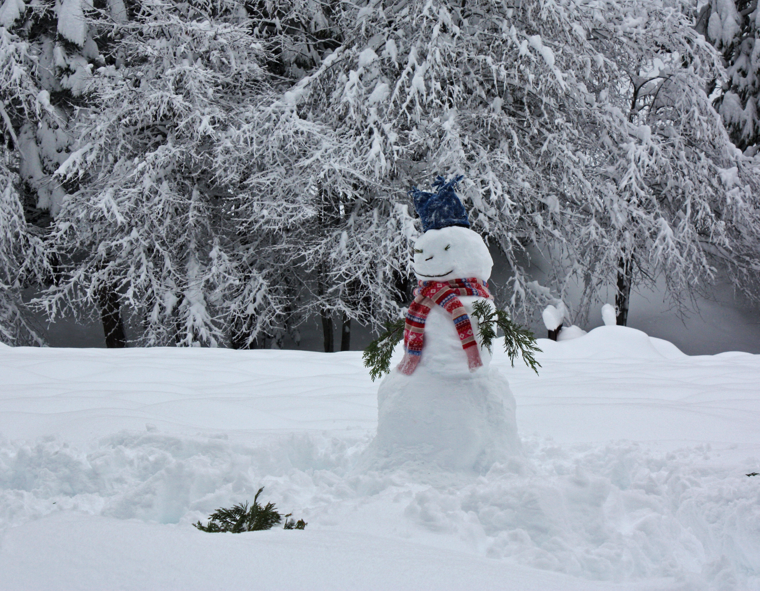 a snowman jan.jpg