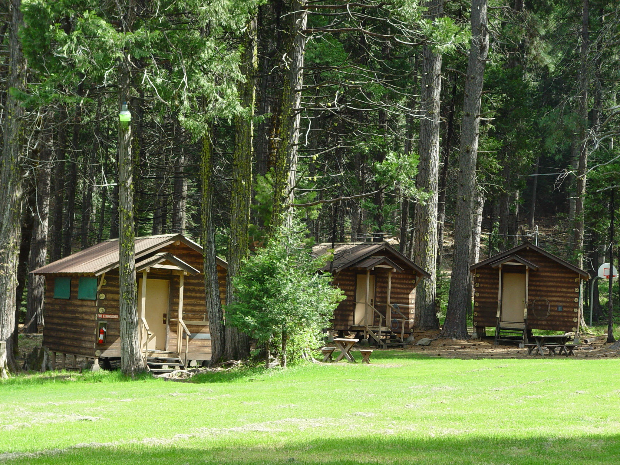 Timber Mountain Cabins