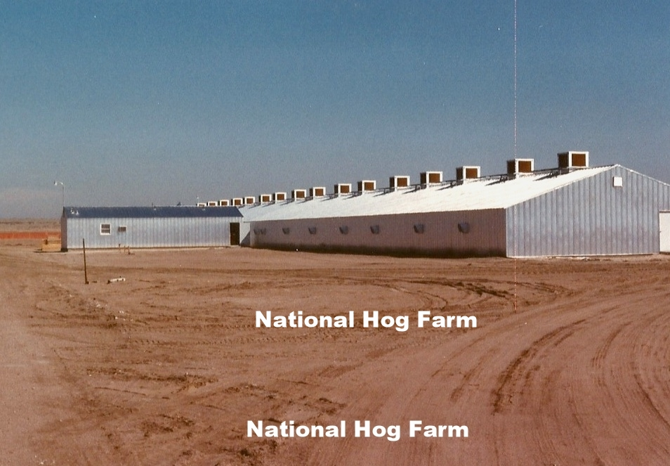 Hog Farm2 Mar 27 1989 Unit I.jpg